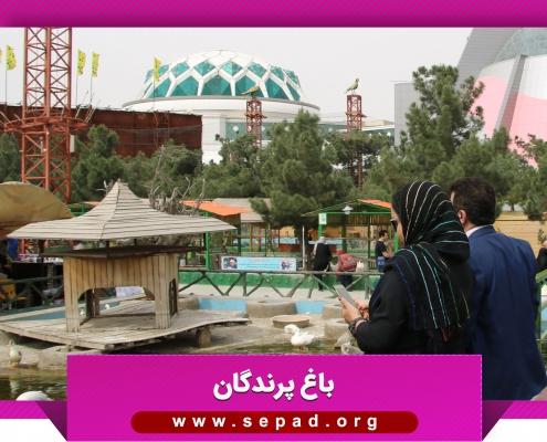 bagh1 495x400 - باغ پرندگان مشهد