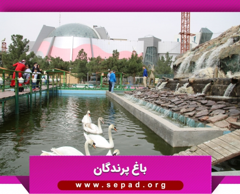 bagh4 495x400 - باغ پرندگان مشهد